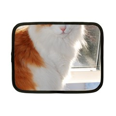 Norwegian Forest Cat Sitting 4 Netbook Case (Small)