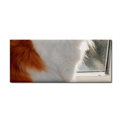 Norwegian Forest Cat Sitting 4 Cosmetic Storage Cases
