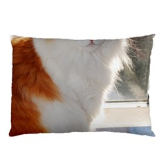 Norwegian Forest Cat Sitting 4 Pillow Case