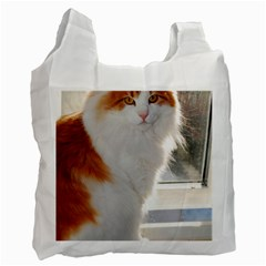 Norwegian Forest Cat Sitting 4 Recycle Bag (One Side)