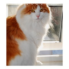 Norwegian Forest Cat Sitting 4 Shower Curtain 66  x 72  (Large)