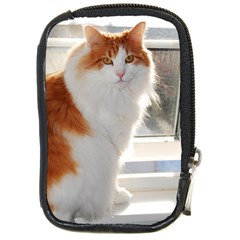 Norwegian Forest Cat Sitting 4 Compact Camera Cases