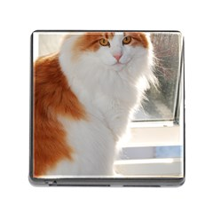 Norwegian Forest Cat Sitting 4 Memory Card Reader (Square)