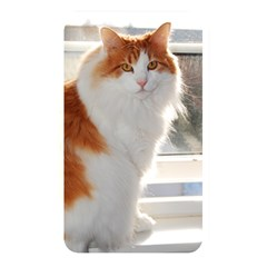 Norwegian Forest Cat Sitting 4 Memory Card Reader