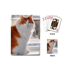 Norwegian Forest Cat Sitting 4 Playing Cards (Mini)