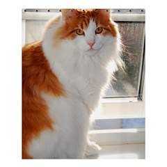 Norwegian Forest Cat Sitting 4 Shower Curtain 60  x 72  (Medium)
