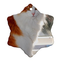Norwegian Forest Cat Sitting 4 Snowflake Ornament (2-Side)
