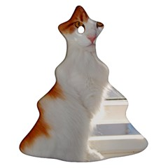 Norwegian Forest Cat Sitting 4 Christmas Tree Ornament (2 Sides)