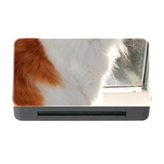 Norwegian Forest Cat Sitting 4 Memory Card Reader with CF