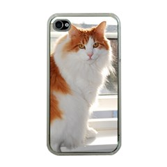 Norwegian Forest Cat Sitting 4 Apple iPhone 4 Case (Clear)