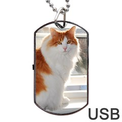 Norwegian Forest Cat Sitting 4 Dog Tag USB Flash (One Side)