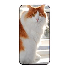 Norwegian Forest Cat Sitting 4 Apple iPhone 4/4s Seamless Case (Black)
