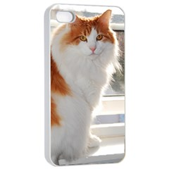 Norwegian Forest Cat Sitting 4 Apple iPhone 4/4s Seamless Case (White)