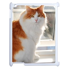 Norwegian Forest Cat Sitting 4 Apple iPad 2 Case (White)