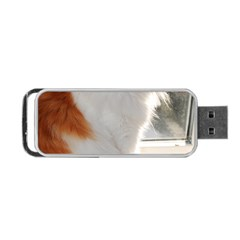 Norwegian Forest Cat Sitting 4 Portable USB Flash (Two Sides)