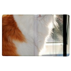 Norwegian Forest Cat Sitting 4 Apple iPad 3/4 Flip Case