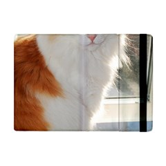 Norwegian Forest Cat Sitting 4 Apple iPad Mini Flip Case