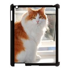 Norwegian Forest Cat Sitting 4 Apple iPad 3/4 Case (Black)