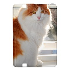 Norwegian Forest Cat Sitting 4 Kindle Fire HD 8.9