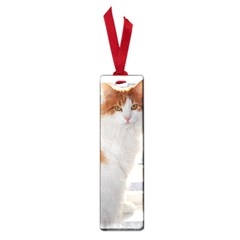 Norwegian Forest Cat Sitting 4 Small Book Marks