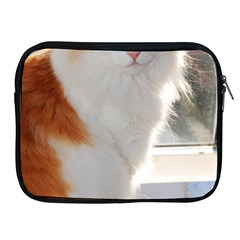 Norwegian Forest Cat Sitting 4 Apple iPad 2/3/4 Zipper Cases