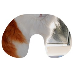 Norwegian Forest Cat Sitting 4 Travel Neck Pillows