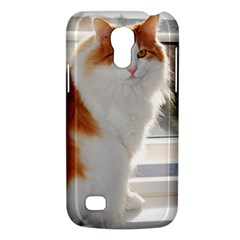 Norwegian Forest Cat Sitting 4 Galaxy S4 Mini