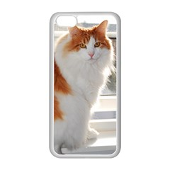 Norwegian Forest Cat Sitting 4 Apple iPhone 5C Seamless Case (White)