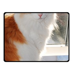 Norwegian Forest Cat Sitting 4 Double Sided Fleece Blanket (Small)