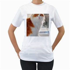 Norwegian Forest Cat Sitting 4 Women s T-Shirt (White)