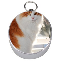 Norwegian Forest Cat Sitting 4 Silver Compasses
