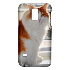 Norwegian Forest Cat Sitting 4 Galaxy S5 Mini