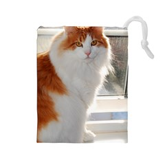 Norwegian Forest Cat Sitting 4 Drawstring Pouches (Large)