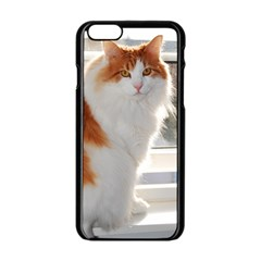 Norwegian Forest Cat Sitting 4 Apple iPhone 6/6S Black Enamel Case