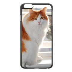 Norwegian Forest Cat Sitting 4 Apple iPhone 6 Plus/6S Plus Black Enamel Case