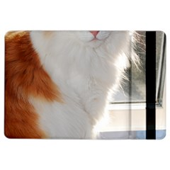 Norwegian Forest Cat Sitting 4 iPad Air 2 Flip