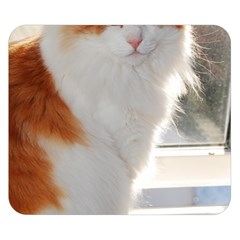 Norwegian Forest Cat Sitting 4 Double Sided Flano Blanket (Small)