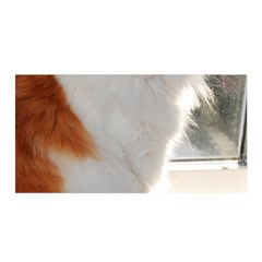 Norwegian Forest Cat Sitting 4 Satin Wrap