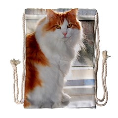 Norwegian Forest Cat Sitting 4 Drawstring Bag (Large)