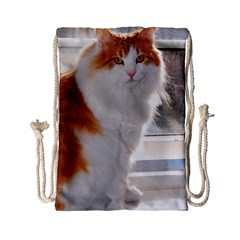 Norwegian Forest Cat Sitting 4 Drawstring Bag (Small)