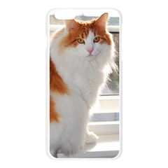 Norwegian Forest Cat Sitting 4 Apple Seamless iPhone 6 Plus/6S Plus Case (Transparent)