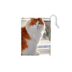 Norwegian Forest Cat Sitting 4 Drawstring Pouches (XS)