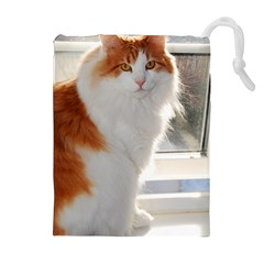 Norwegian Forest Cat Sitting 4 Drawstring Pouches (Extra Large)