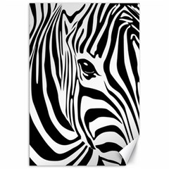 Animal Cute Pattern Art Zebra Canvas 20  X 30