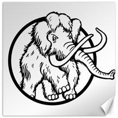 Mammoth Elephant Strong Canvas 20  X 20