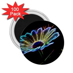 Flower Pattern Design Abstract Background 2 25  Magnets (100 Pack)