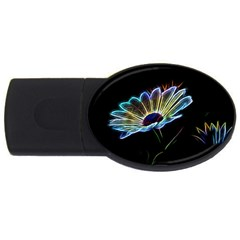 Flower Pattern Design Abstract Background USB Flash Drive Oval (4 GB)