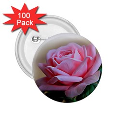 Rose Pink Flowers Pink Saturday 2 25  Buttons (100 Pack)
