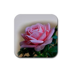 Rose Pink Flowers Pink Saturday Rubber Coaster (square)