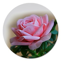 Rose Pink Flowers Pink Saturday Magnet 5  (round)
